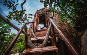 Giant Birds' Nests Are The Perfect Place To Stay Close To The Ocean