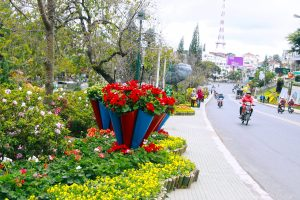 Da Lat Flower Festival Organizers Offer Free Wine For Visitors