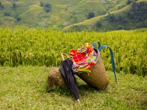 Insider: Mu Cang Chai Got Into Most Visit-worthy List