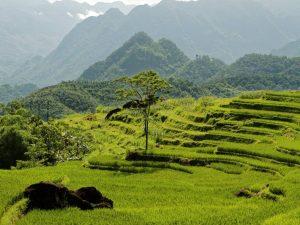 6 Emerging Destinations In Vietnam