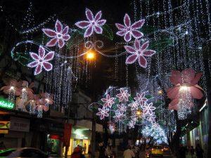 Vietnam Travel Tips During Tet Holiday