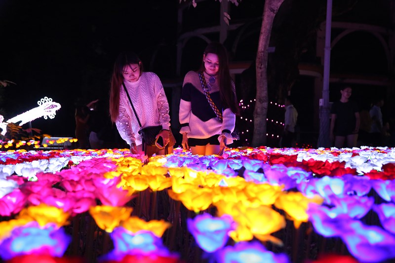 Saigon Zoo Hosts LJ International Lighting Festival & Saigon Zoo Hosts LJ International Lighting Festival - Ha Food Tours